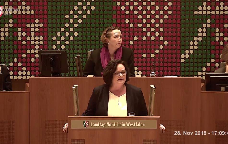 Rede im Plenum zum Medienhaushalt 2019